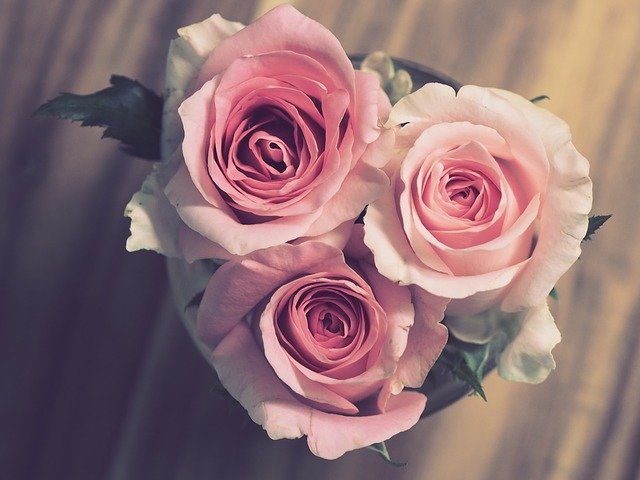 A bouquet of pink flowers